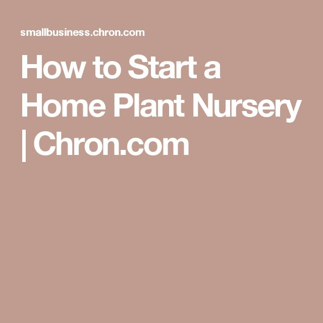 retail garden center ideas 28 best plant nursery ideas images on pinterest plant nursery