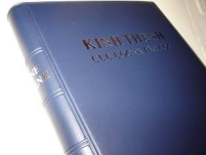 The Holy Bible in Vietnamese / VNOV 63VL