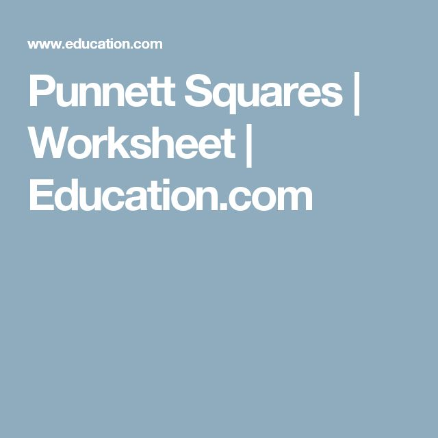 Plants And Seeds Worksheets Pdf Die Besten  Punnett Square Activity Ideen Auf Pinterest  Credit Worksheet Word with Common Noun And Proper Noun Worksheet Excel Punnett Squares Sortierungarbeitsbltterhome Schooling Punnett Squares   Worksheet  Child Support Worksheet B Pdf