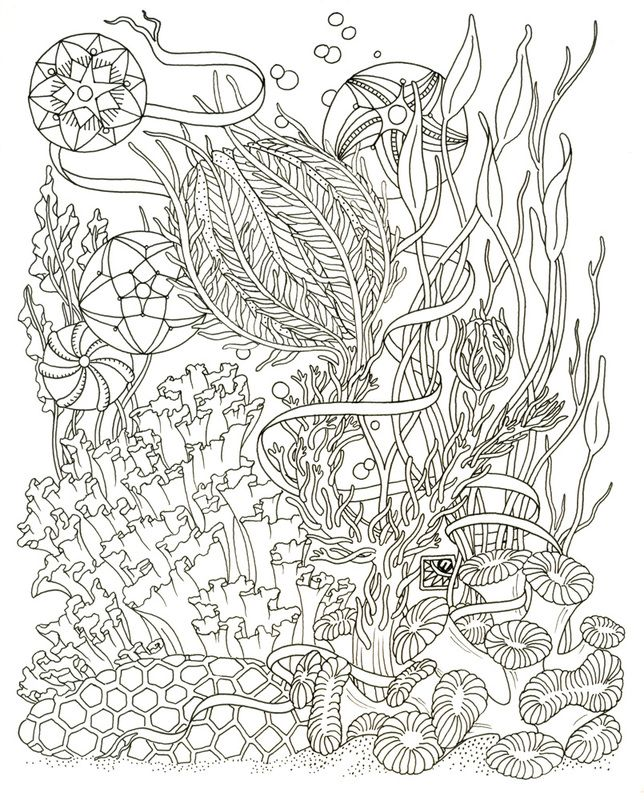 75 best Free Colouring Pages