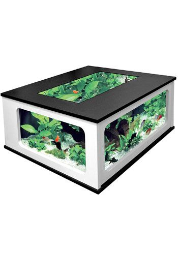 I want this fish tank table so much. Is it tacky or amazing or both?