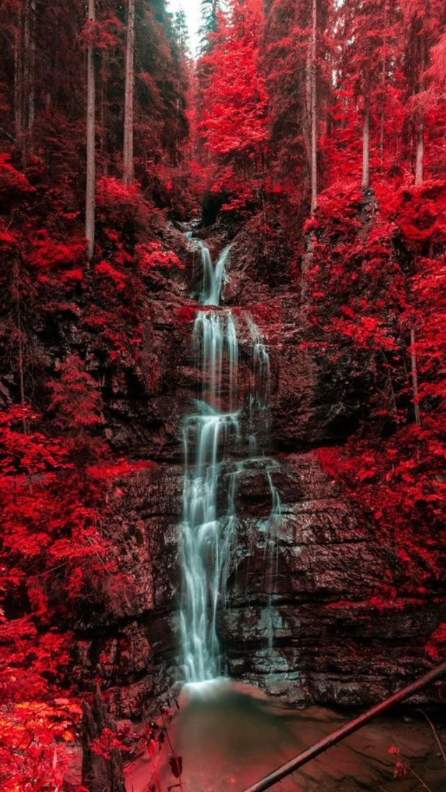 Waterfall and Austria forest source Flickr.com