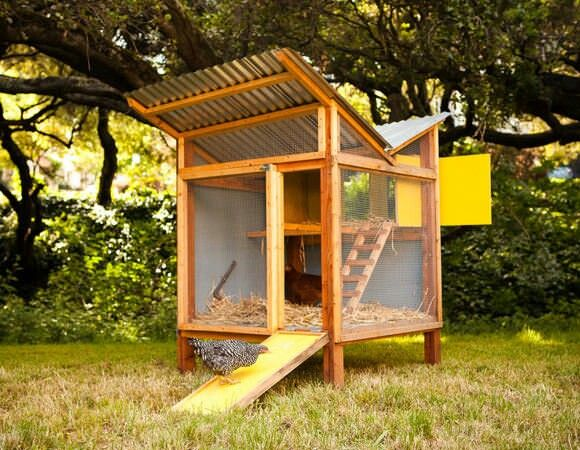 Cool chicken coop coops pinterest for Cool chicken coop plans