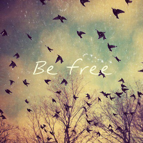 Whether it is a state of mind or physical space, learn to be free and free others.
