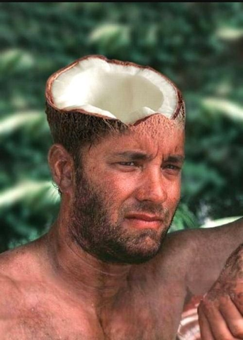 head,coconut,photomontage, a laughing joke