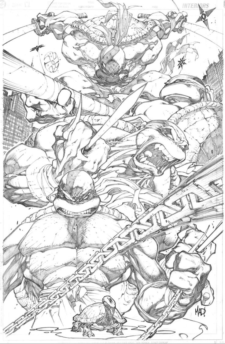 Teenage Mutant Ninja Turtles by Joe Madureira *