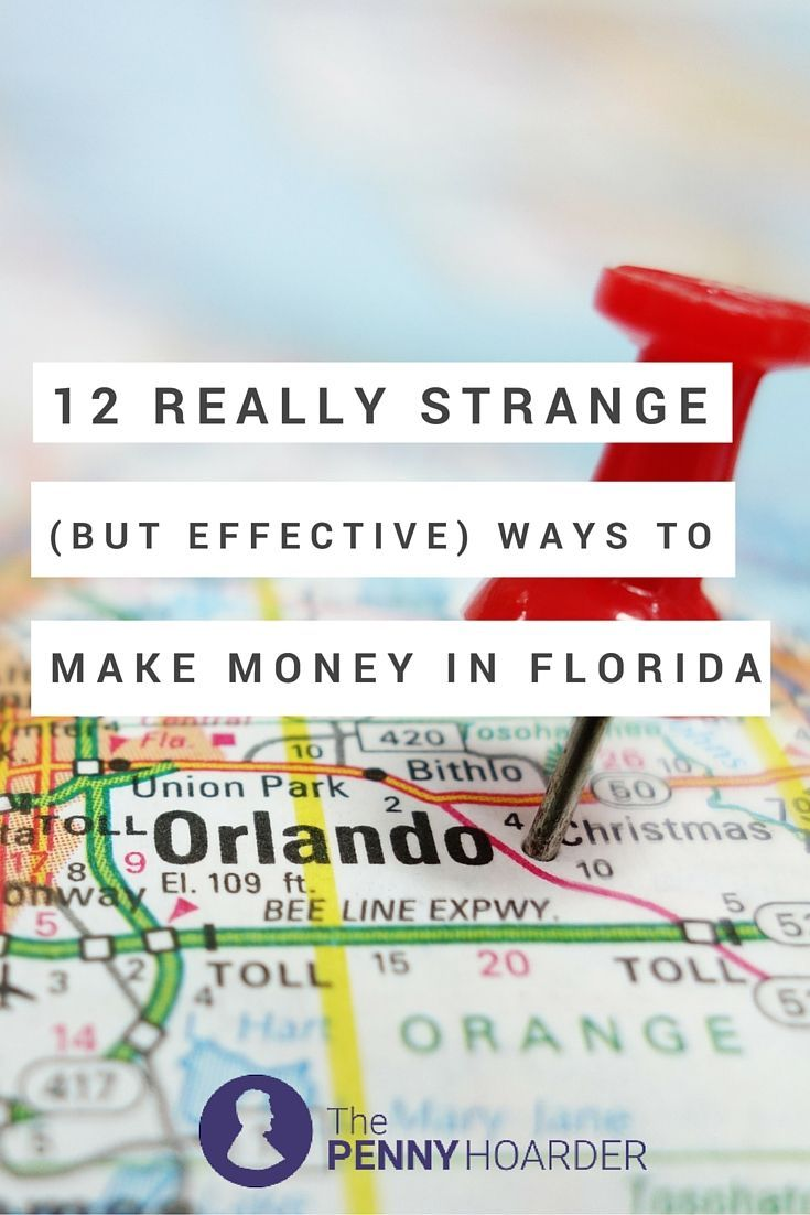 12 Really Strange But Effective Ways To Make Money In Florida