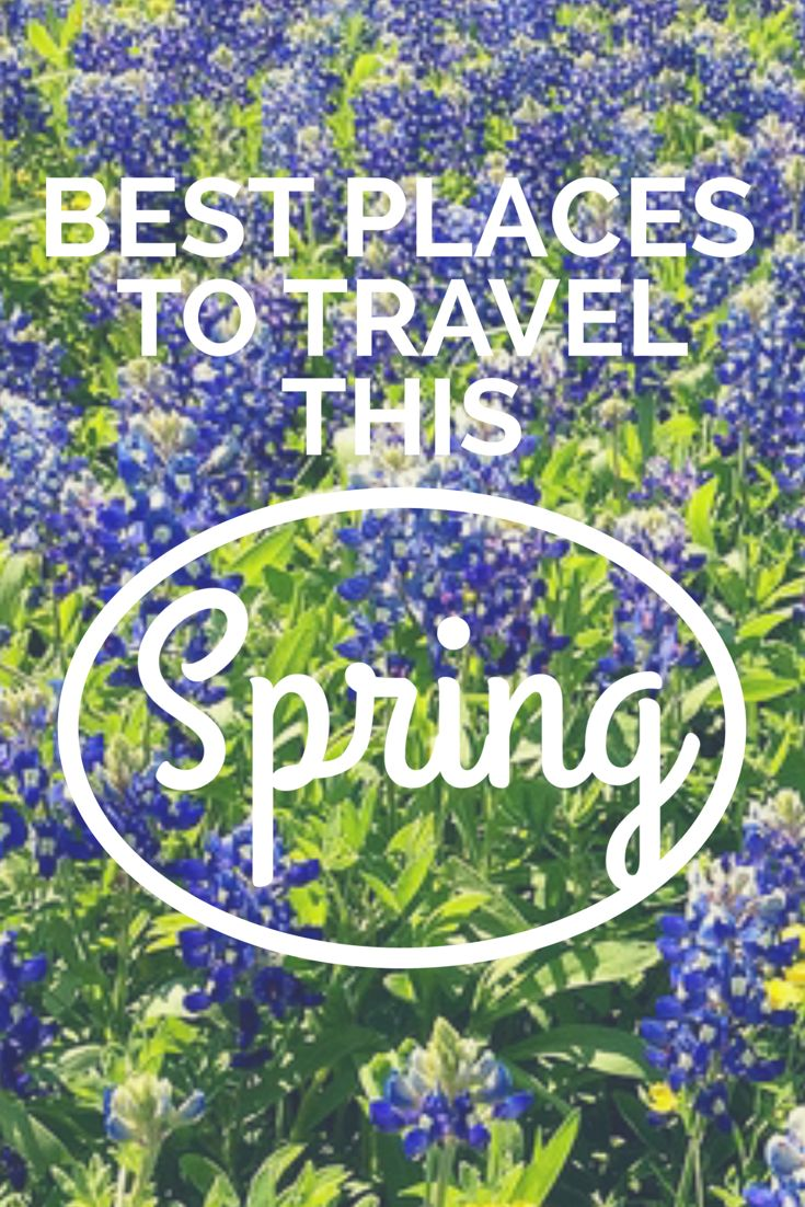 Top Places in the USA to Travel this Spring. Click the pin to read the post from www.flirtingwiththeglobe.com