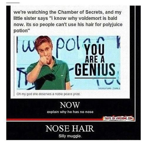 GENIUS! I am a huge Harry Potter fan and I didn't even know about that. #shame