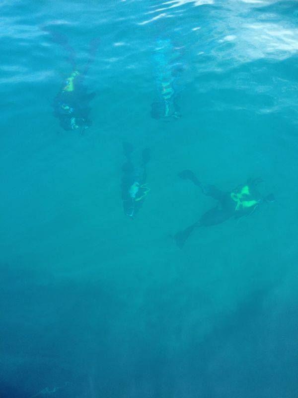 Club Buceo Aqua