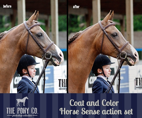 Before and After The Pony Co. Photoshop Actions
