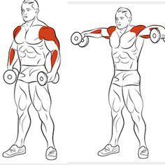 8 Amazing Shoulder Exercises - WeGrowMuscle Men's Super Hero Shirts, Women's Super Hero Shirts, Leggings, Gadgets