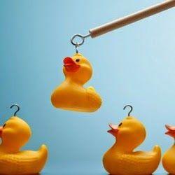 RH DO MORENO: Informações sobre empresas antes de aceitar a prop...