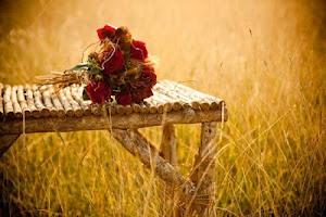 bouquet di rose rosse e spighe di grano  Bouquet for a June wedding