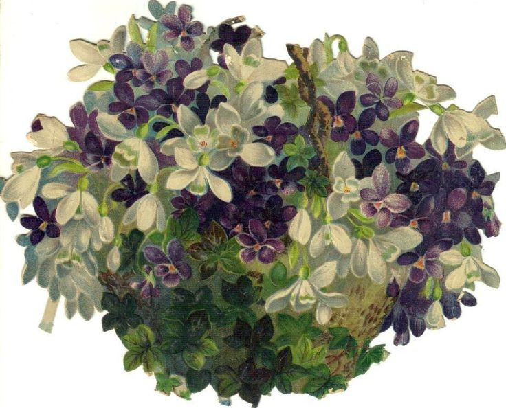 Larger Basket of Violets & Snowdrops Victorian Die Cut Scrap c1880