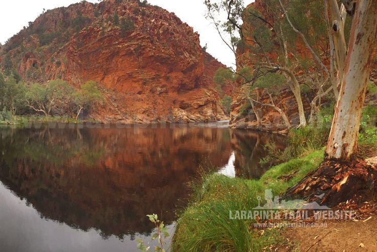A great shot of Ellery Creek Big Hole, Section 6, Larapinta Trail. © Explorers Australia Pty Ltd (www.explorersaustralia.com.au)