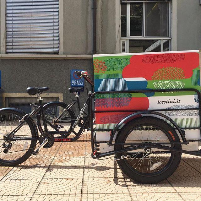 Le bici sono arrivate