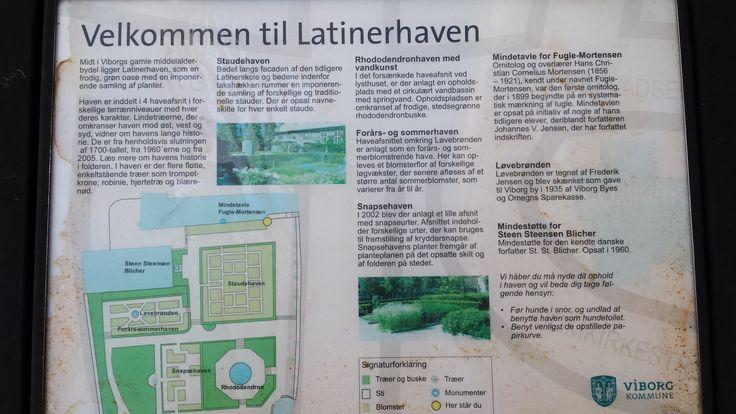 Latinerhaven
