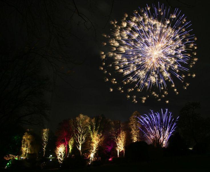 Am Samstag, 13. Januar 2018, erleuchten bunte Farben nicht nur die Bäume im Westfalenpark, sondern auch den Himmel über ihm: Ein großes Höhenfeuerwerk sorgt für den krönenden Abschluss für das Winterleuchten.   #Dortmund #Freizeit #Kultur #Westfalenpark
