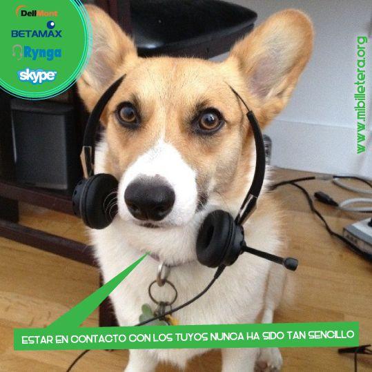 Servicios VoIP. Mibi te acerca a los tuyos, te ofrecemos la opción de recargar tus servicios VoIP para que te puedas comunicar con todos los que quieres en el momento que desees y puedas sentirte mas cerca. www.mibilletera.org