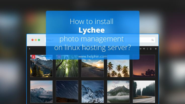 How to install Lychee photo management application on Linux hosting server?
