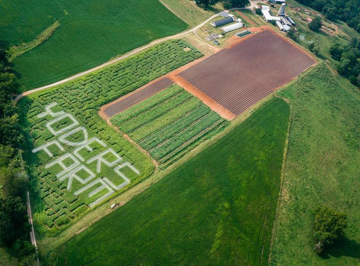 Just finally got Yoders' Farm back onto Pinterest!  Here is this falls corn maze. Open Thursdays, Fridays, and Saturdays.  We are located near Lynchburg VA.  Find out more at yodersfarm.com