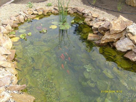 zahradní jezírka Výstavba zahradních jezírek,   Fotogalerie jezírek