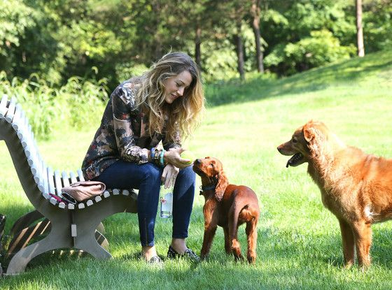 Blake Lively Looks Gorgeous During Playdate With Her Dogs—Take a Look!