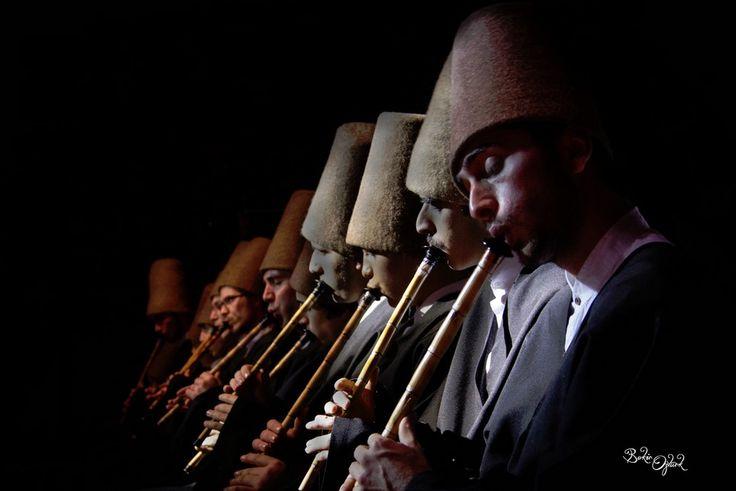 Musicians of Sufi