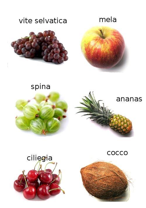 frutta e bacche