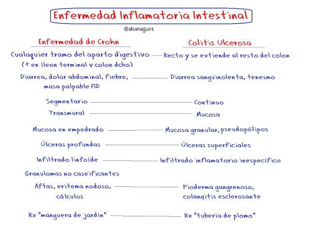 Enfermedad Inflamatoria Intestinal: Crohn y Colitis Ulcerosa | Dr. Alberto Sanagustín