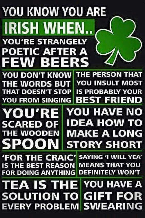 Since my heritage is part Irish, some of this is true!  Won't tell you which part.  You guess.