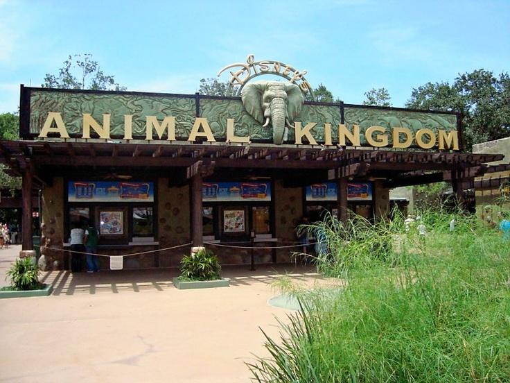 Animal Kingdom Walt Disney World - Orlando, FL.
