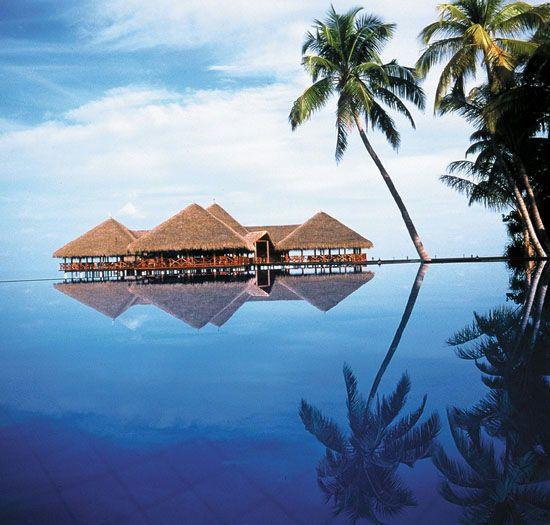Die Malediven - ein absolutes Urlaubsparadies ☼☼☼☼