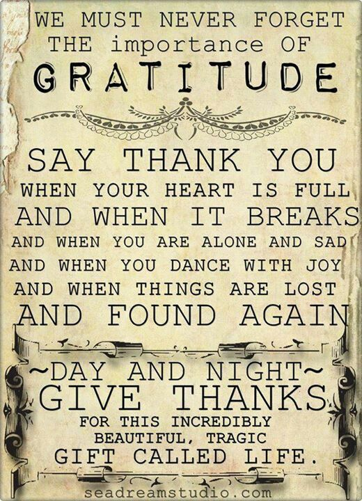 An attitude of gratitude makes all the difference.                                                                                                                                                                                 More