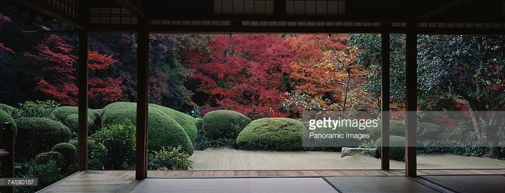 Foto stock : Plants and maple trees viewed from a temple, Shisendo Temple, Kyoto City, Kyoto Prefecture, Japan