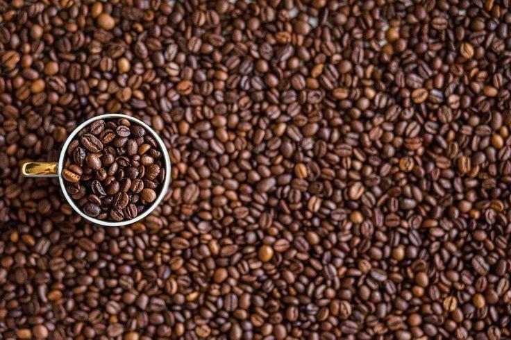 Tento článek je zcela jistě pro příznivce kávy. Je energetickým nápojem, který vás po probuzení dokonale vzpruží. Navíc chrání před…