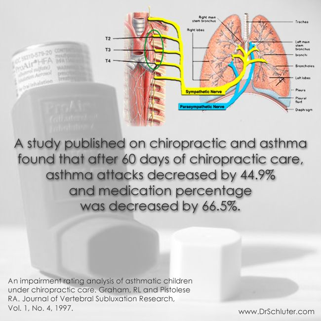 """How could chiropractic help with asthma?"" Chiropractic does more than address the symptoms of asthma. Rather, chiropractic restores proper function to the nervous system so that the BODY may HEAL itself. Restoring proper function to the nervous system allows the brain to communicate with the lungs the way it was meant to, therefore correcting some of the asthma related issues! #GetAdjusted #Chiropractic http://www.DrSchluter.com"