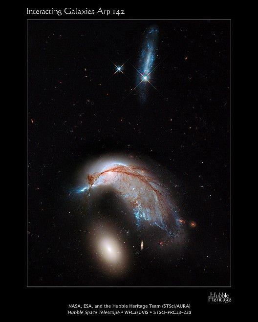 Due galassie vicine che riproducono le sembianze di un pinguino e un uovo. Le ha fotografate il telescopio spaziale della Nasa, Hubble. I due corpi celesti sono scientificamente conosciuti con i nomi di NGC 2936 e NGC 2937 e si trovano distanti 400 anni luce dalla Terra nella costellazione Hydra