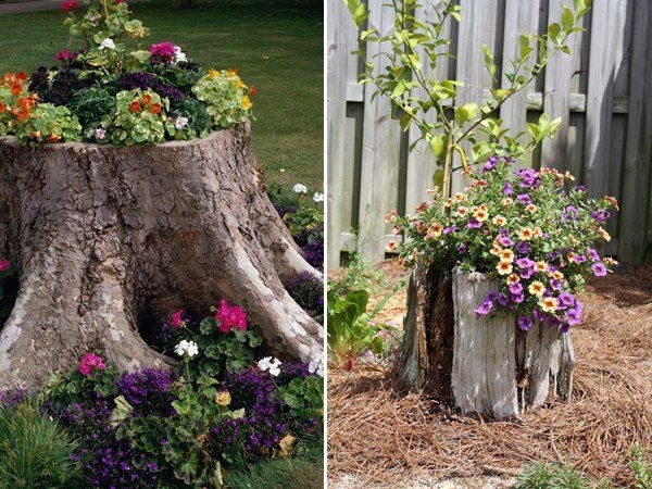 Photo: Stump planters: Gardens Ideas, Trees Trunks, Backyard Ideas, Decor Ideas, Stumps Flowers, Flowers Beds, Outdoorsy Stuff, Stumps Ideas, Trees Stumps