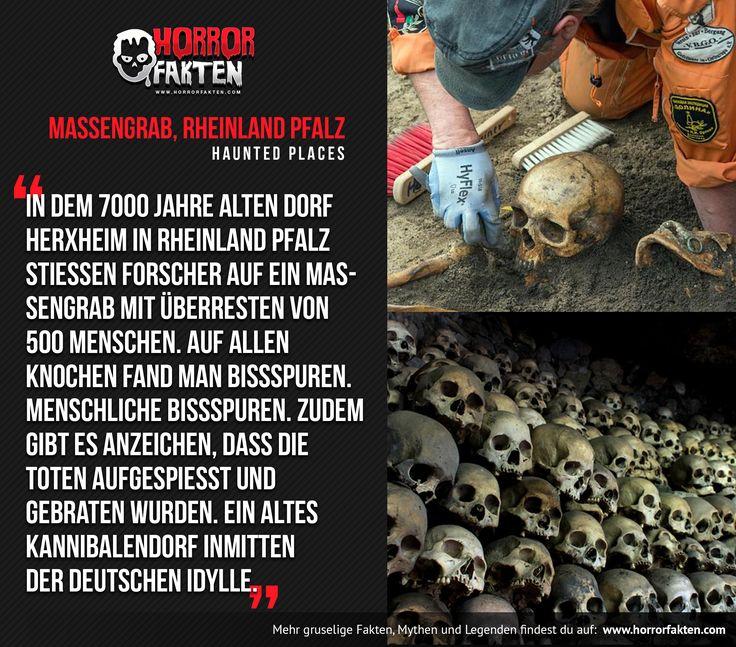 Massengrab eines Kannibalen Dorfes in der Pfalz