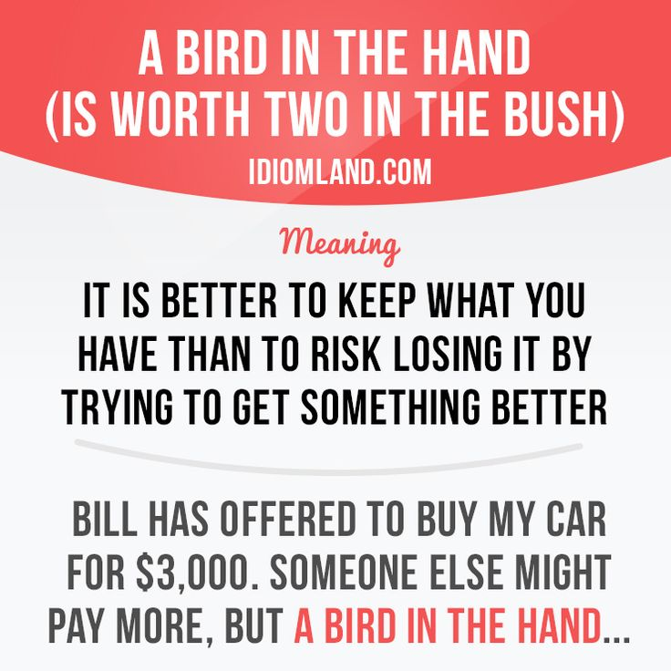 """A bird in the hand (is worth two in the bush)"" means ""it is better to keep what…"