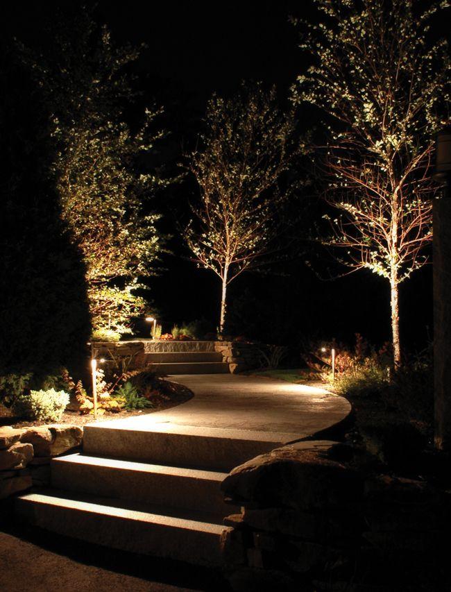 Uplit_Trees.jpg (650×853)