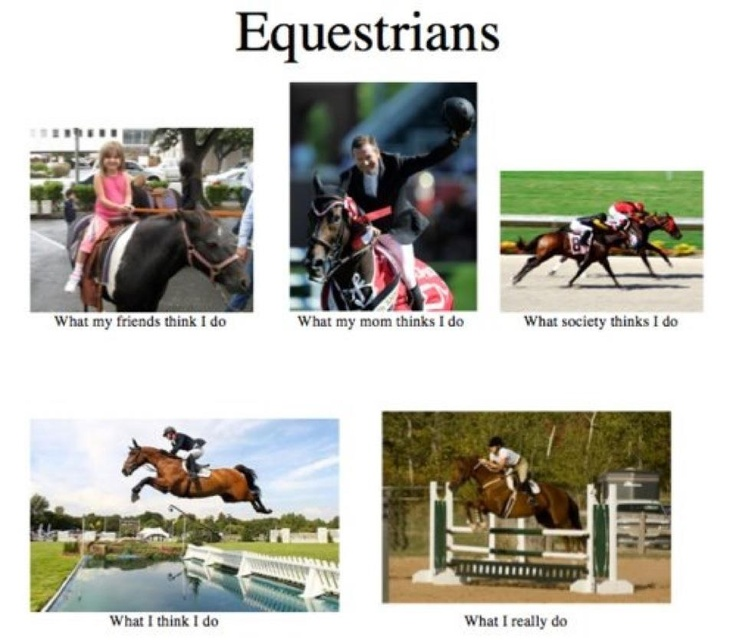 pretty much: Horseback Riding, Hors Stuff, Equestrian Quotes, Equine Life, Website, Internet Site, So True, Hors Life, Equestrian Life