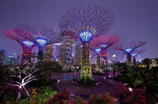 Gardens by the Bay – Singapour Gardens by the Bay est un parc botanique de loisirs de plus de 100 hectares situé à Singapour (Malaisie) Imaginé par le cabinet d'architectes Anglais Grant Associates cet endroit est un mélange remarquable entre la nature et la technologie, entre autres ces 18 Super arbres de 50 mètres de hauteur éclairés par des projecteurs Led. A découvrir en images dans la suite de l'article en cliquant sur la photo.