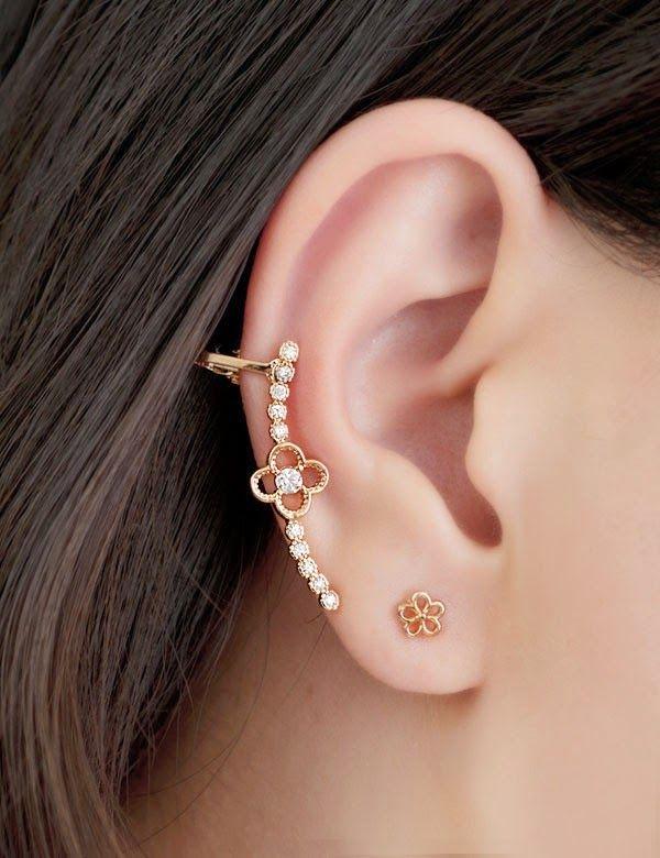 Fashion Earrings 2014
