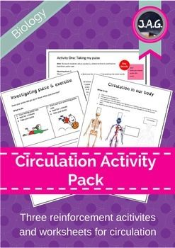 Activities for students to support teachers and reinforce learning around exercise, circulation and heart pulse. Package contains step-by-step guides for practical activities, practical worksheets, key words, and body-system flap diagrams.