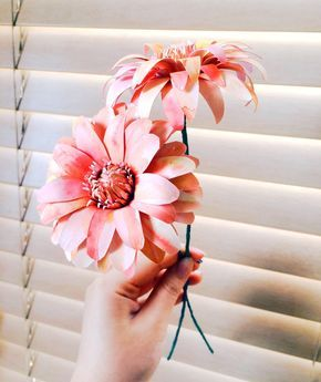 Dahlias are an incredibly diverse species of flowers. Standing as symbols  of inner strength and creativity, they are the perfect flowers to gift to  loved ones. These paper dahlias are similar to peony-flowering dahlias -  bright, colorful, high petal counts that can be curled as you may see fit
