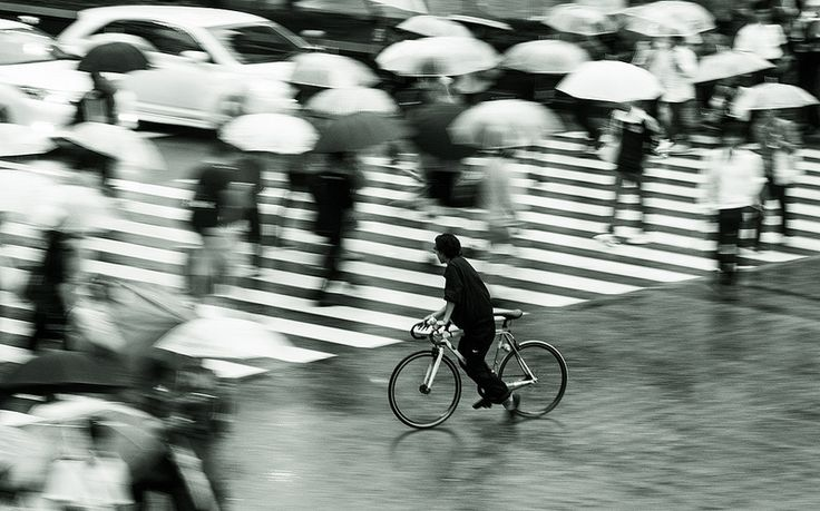 Navigating by Bike | Flickr - Photo Sharing!