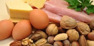 eiwitrijke snacks voor gamma dagen